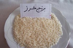 قیمت برنج اصل شمال