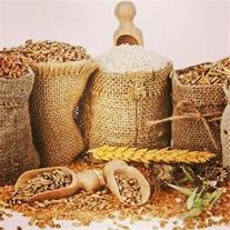 واردات و فروش خوراک دام و طیور - خوراک آبزیان