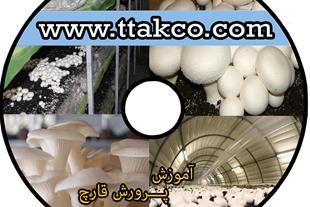 خرید کمپوست قارچ دکمه ای در ارومیه-09199762163