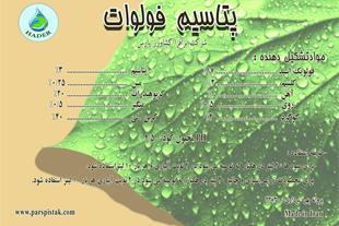 فولوات پتاسیم مایع و پودری - 1
