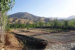 خرید زمین 1350 متری در لواسان