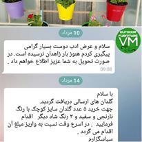 گلدان عصایی
