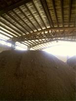 تفاله خشک خرما با 50 درصد هسته
