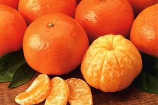 پخش نارنگی داراب - 1