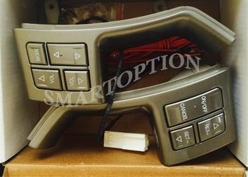 فروش کروز کنترل جیلی - 1