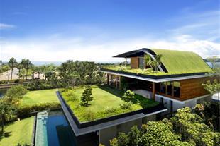 احداث فضای سبز در پشت بام