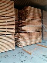 واردات چوب جنگلی راش ترکیه