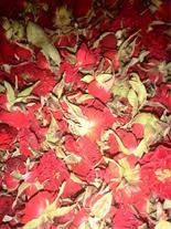 خریدار غنچه خشک گل مینا و ساناز و الیزابت