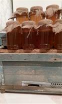 خرید و فروش عسل طبیعی