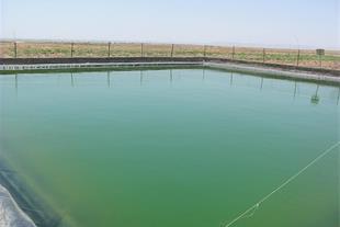 نصب استخر پرورش ماهی