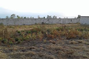 فروش زمین مرغداری با سند و مجوز ساخت در املش