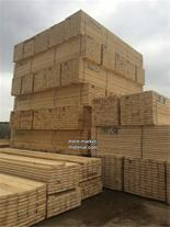 وارد کننده چوب روسی