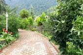 باغ ویلا نوشهر دامنه کوه با استخر