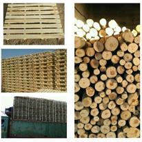 تولید پالت چوبی ارسال به سراسر کشور