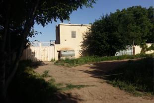 فروش بره پرواری 225 راسی به همراه باغ در قزوین