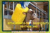 تولید دستگاه اتوماتیک و فرچه ریلکس کننده گاو