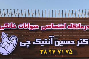 درمانگاه اختصاصی حیوانات خانگی دکتر حسین آنتیک چی