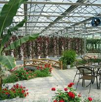 زیباسازی محوطه باغ ویلا اجرای گلخانه و سقف شیبدار