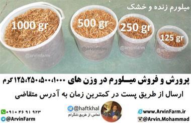 فروش میل ورم سوپرورم زنده و خشک - 1