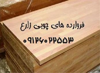 واردات چوب جنگلی راش گرجستان - واردکننده چوب راش - 1