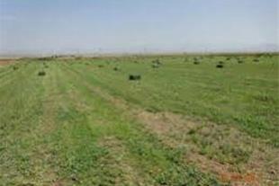فروش زمین صنعتی در نظرآباد