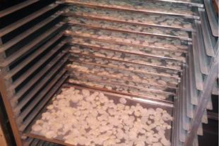 راه اندازی خط تولید خشک کن میوه وسبزیجات