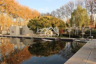 فروش 20300 متر باغ ویلا در محمدشهر