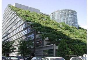 احداث روف گاردن و فضای سبز پشت بام