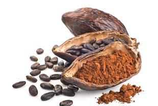 قیمت پودر کاکائو، فروش عمده پودر کاکائو