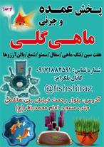 فروش عمده ماهی گلی شیراز