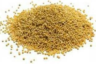 خرید و فروش انواع دانه های کشاورزی
