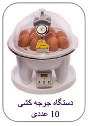 فروش ویژه دستگاه جوجه کشی خانگی ارزان قیمت - 1