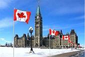 مهاجرت به کانادا با فرزانه آبروانی