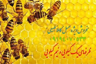 فروش ویژه عسل کاملاً طبیعی