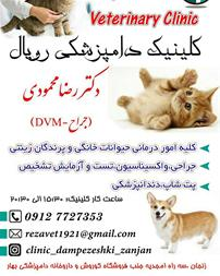 کلینیک دامپزشکی در زنجان ، کلینیک دامپزشکی رویال - 1