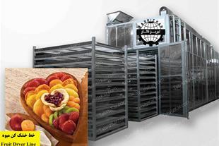 خشک کن میوه و سبزیجات