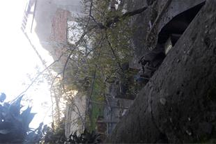 منزل کلنگی تخریب شده 300 متر قائمشهر