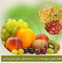 تولید و خرید و فروش انواع میوه خشک