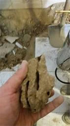 اسیب موریانه به خاک کف اشبزخانه