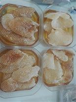 عرضه عسل طبیعی و ژل رویال