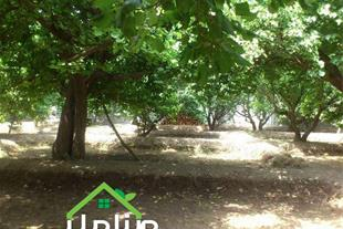 باغچه 525 متری در لم آباد کد1255