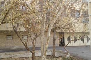 آپارتمان 62 متری در 22 بهمن اصفهان 190 میلیون