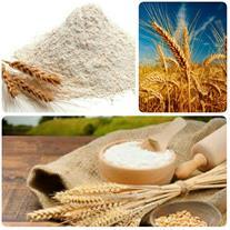 فروش انواع آرد صادراتی