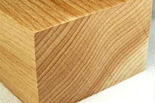 فروش چوب راش