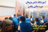 آموزش و تعمیرات cng ، آموزش سیستم گاز