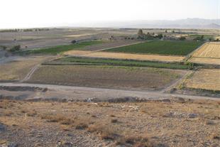 فروش زمین کشاورزی با چاه 13 لیتر بر ثانیه
