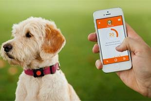 فروش جدیدترین مدل ردیاب حیوانات ( GPS حیوانات )