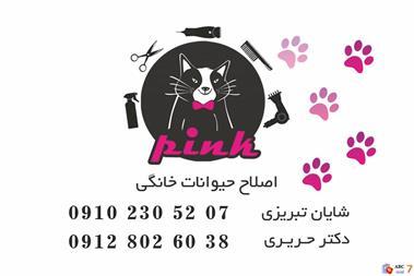 آرایشگاه حیوانات خانگی - 1