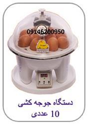 کوچکترین دستگاه جوجه کشی خانگی - 1