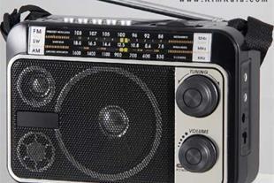 فروش پستی اسپیکر فلش و مموری خور رادیو دار پر قدرت